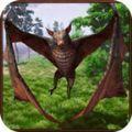 蝙蝠模拟器2020
